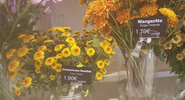 Tarjetas portaprecios Edikio floristería