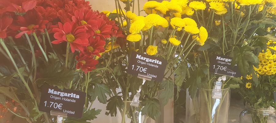 tarjetas-portaprecios-Edikio-floristeria-y-jardineria